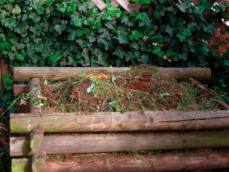 Dove si può effettuare il compostaggio? Scopri il compostaggio