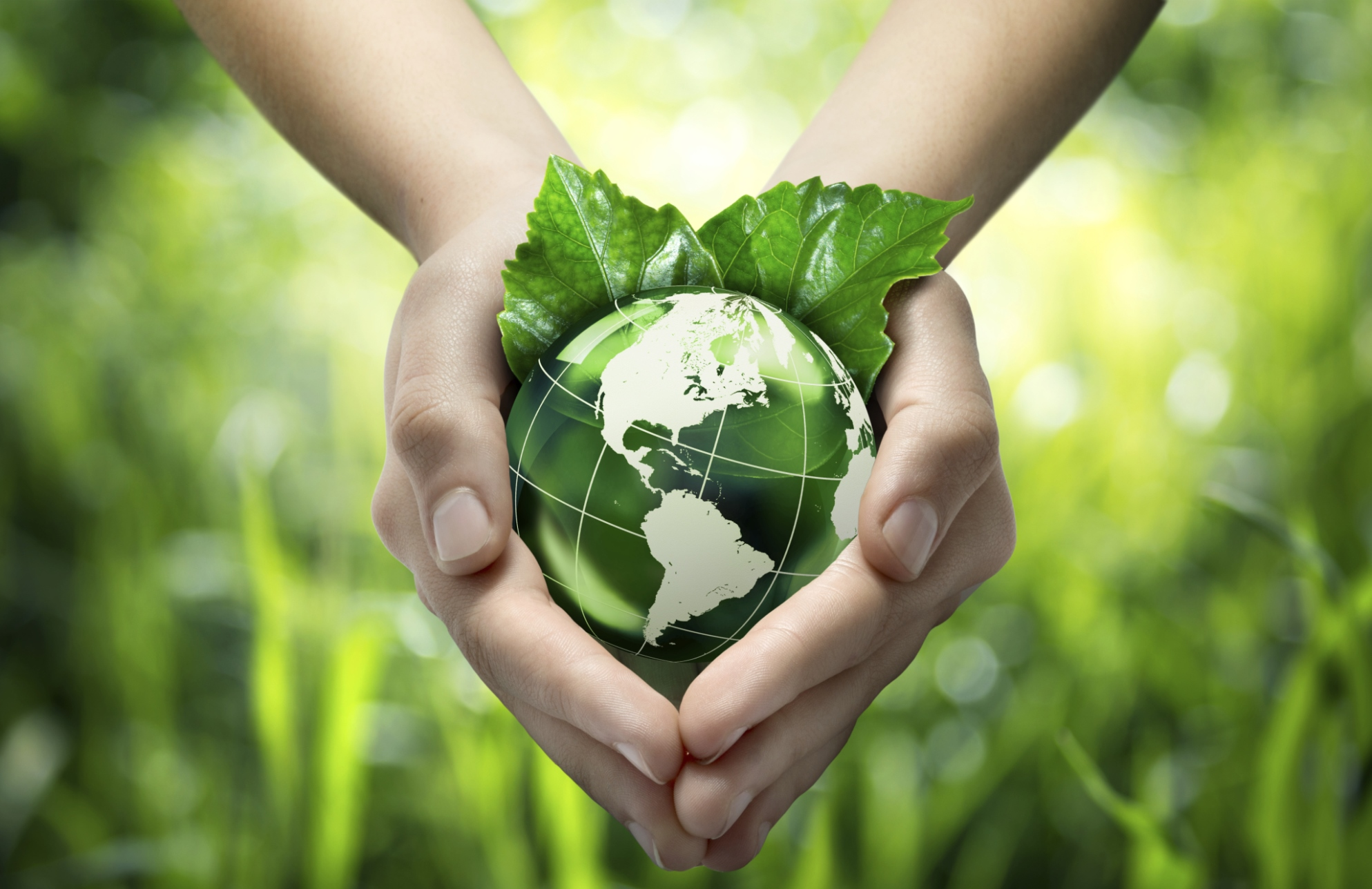 Vantaggi del compostaggio. Scopri il compostaggio